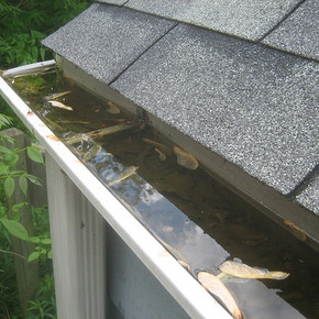 Flooded Gutters