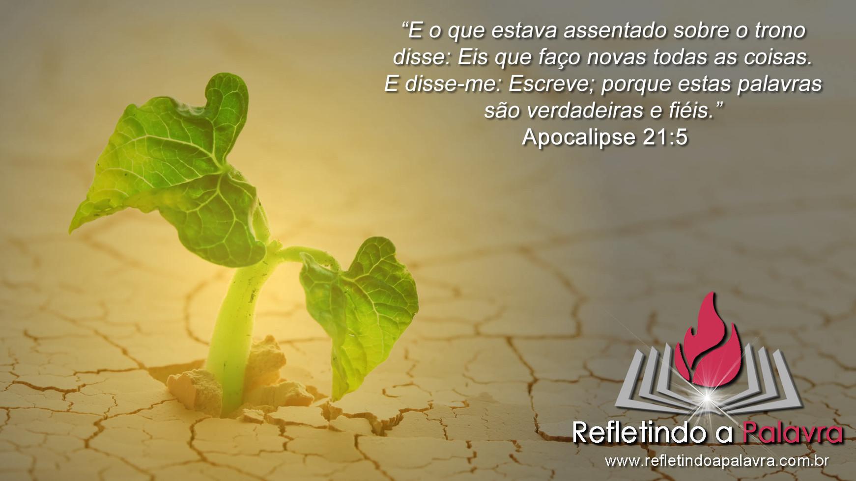 APOCALIPSE 21-5.jpg