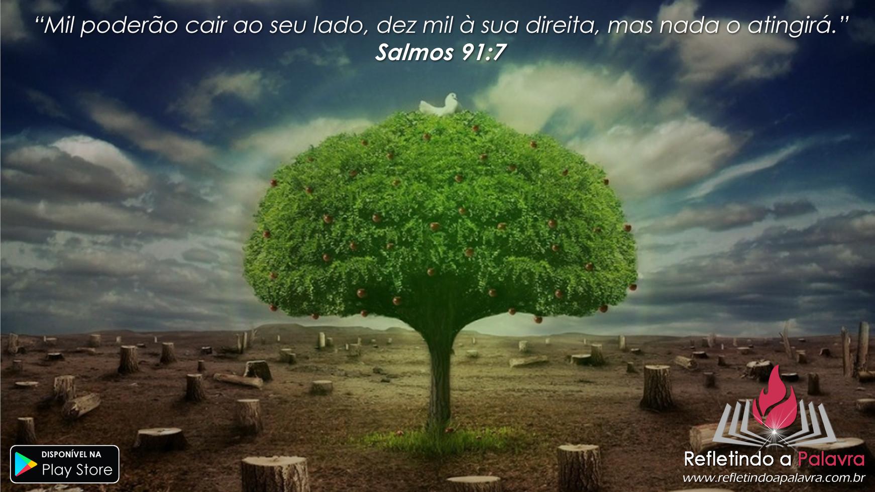 Salmos 91.jpg