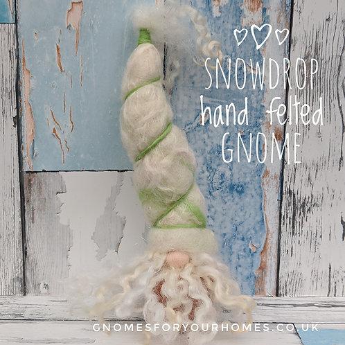 Bartholomew Snowdrop in a pot