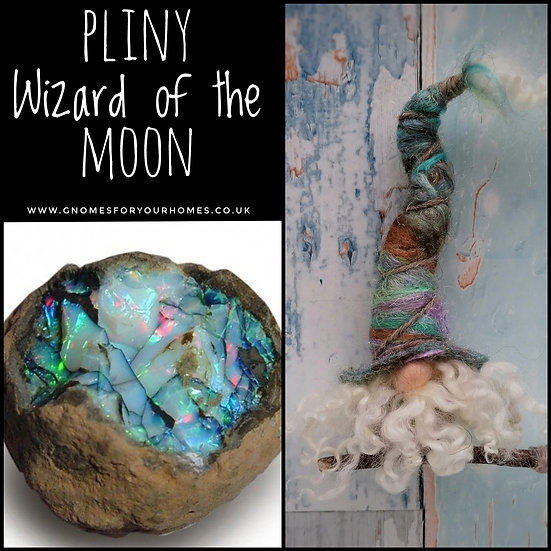 Pliny, Wizard of the Moon.  Gnome Ornament