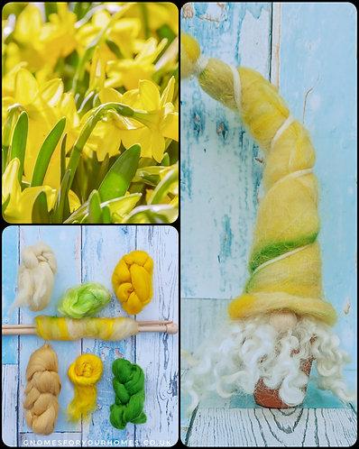 Jonquil Daffodil