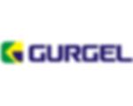Gurgel logo 250x200.png