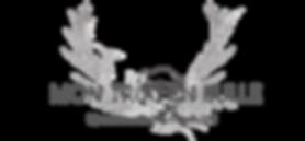 logo2021-gris.png