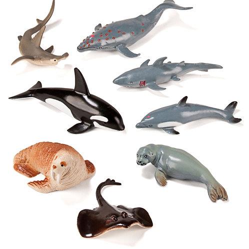 Animaux de la mer