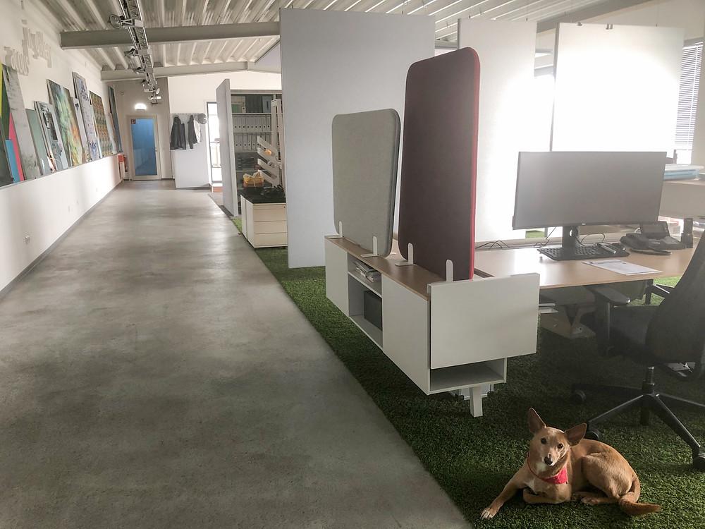 Ansicht der neuen Produktionshalle in Lemwerder bei Bremen