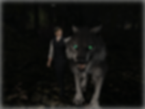 Wolves nox.png