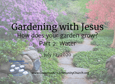 How does your garden grow? Part 2: Water