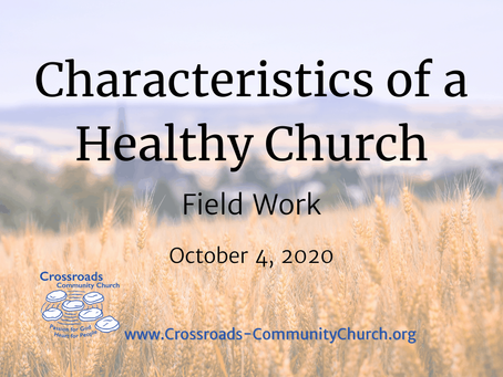 Characteristics of a Healthy Church: Field Work
