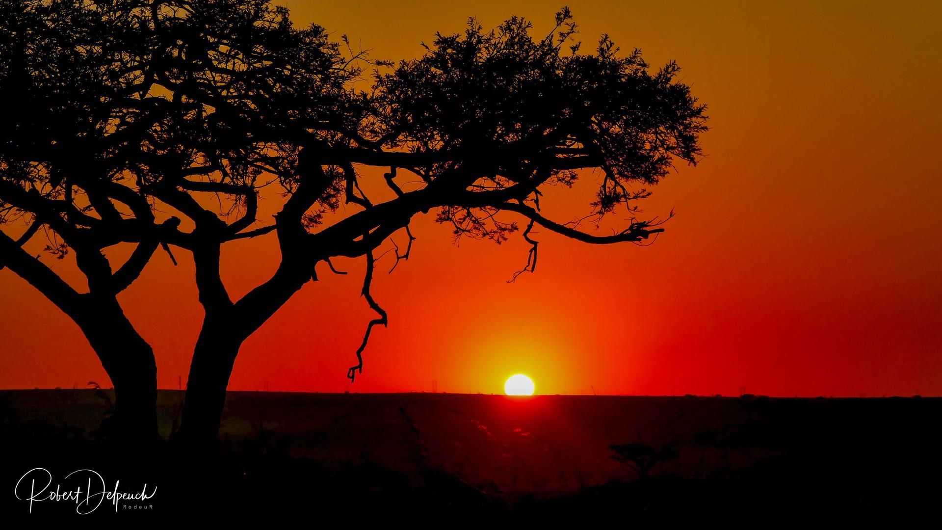 Sunset Esiweni Nambiti - RSA