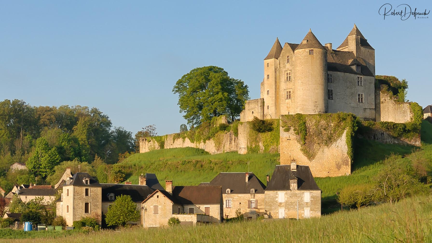 Salignac, château de Fènelon