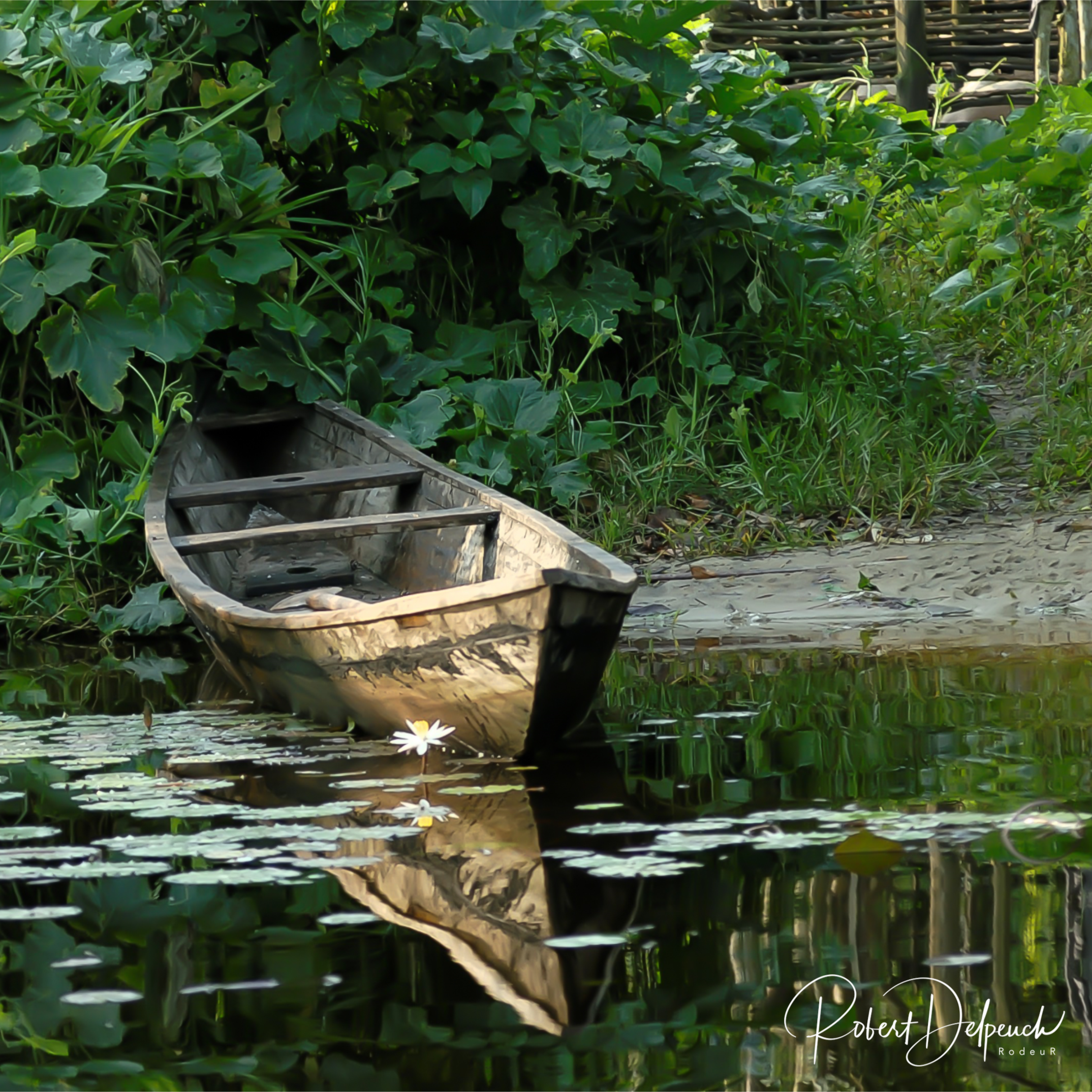 Transport en pirogue