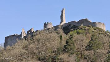 Ruines du château de Ventadour
