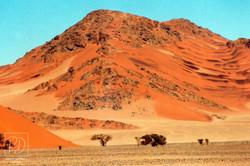 Dunes, désert du Namib