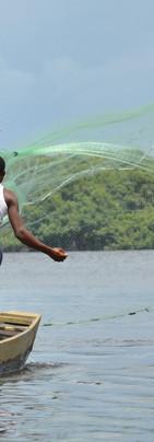 Pêche à l'épervier sur la lagune