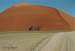 Dune 45, désert du Namib