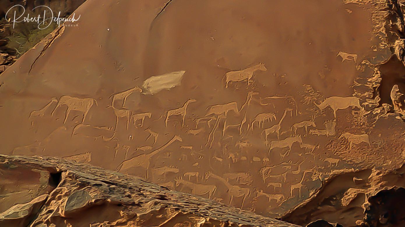 Peintures rupestres - Damaraland