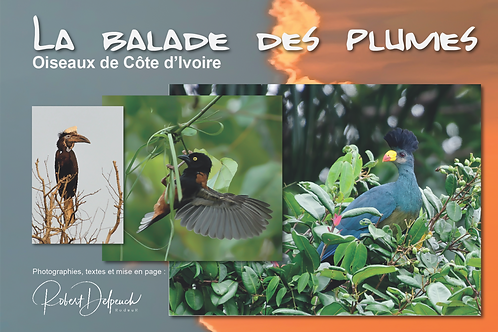 """Livre """"La Balade des Plumes"""""""