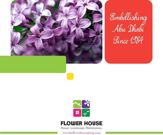 flower_Page_01.jpg