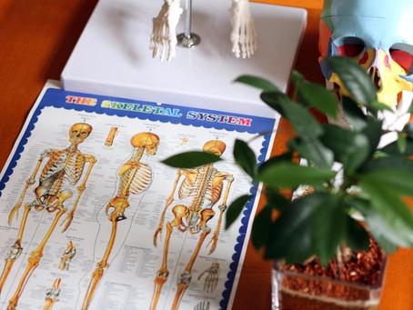 新たなオステオパシー誇張法の療法家