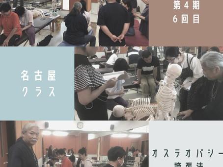 名古屋オステオパシー誇張法クラス2020年8月