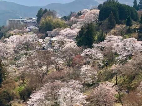 3月23日、大須で体験施術
