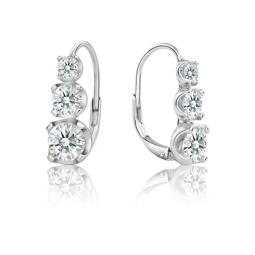 Earrings - Elegant Springbacks