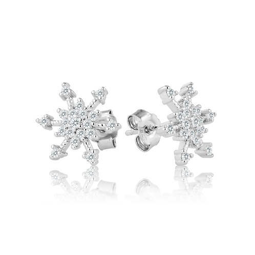 Earrings - Winter Sparkle