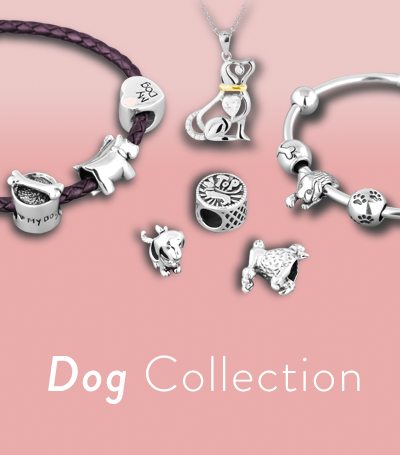 DogCollectionHome.png