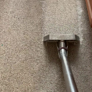 Carpet Cleaning magic wand!