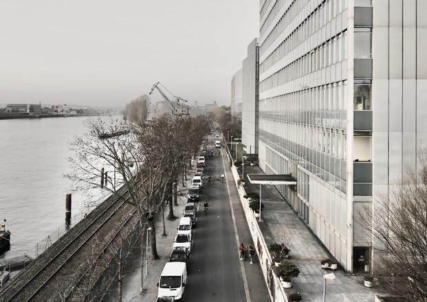 Novartis & Rheinhafen, 2021