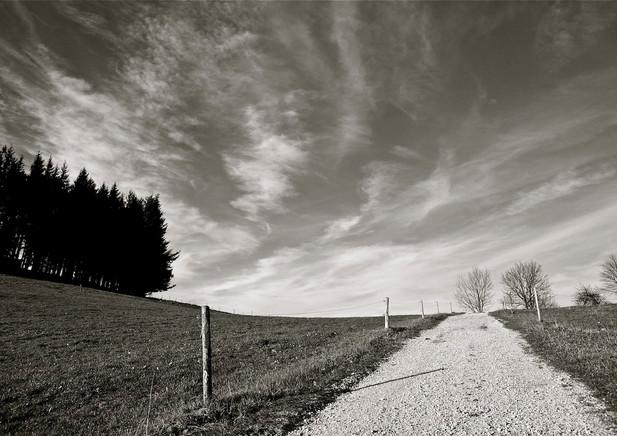 Schwarzwald, near St. Ulrich (DE), 2012