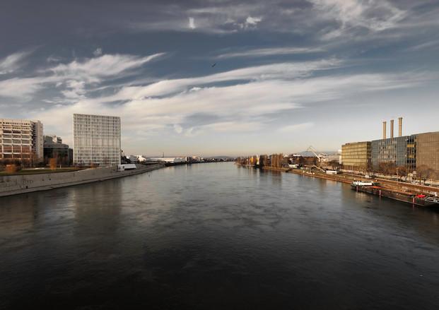 Rhine / Novartis, 2019
