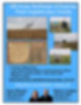 information sheet- two sisters.jpg