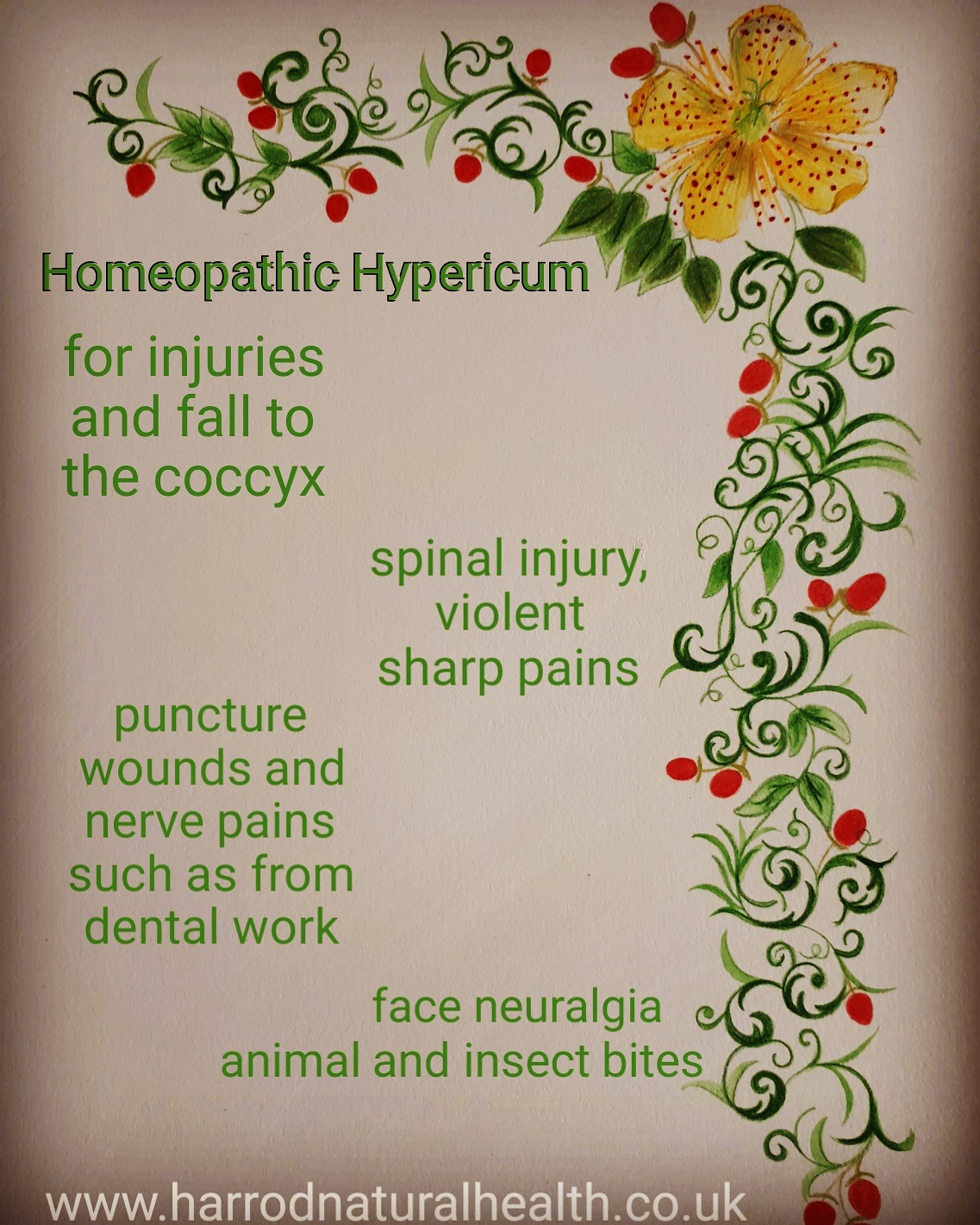 Homeopathic Hypericum for injuries