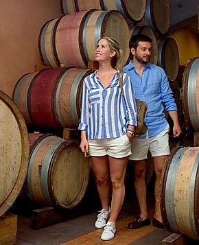 wine tour, barrel cellar, Chateauneuf du Pape, Domaine de la Janasse, Avignon wine tour