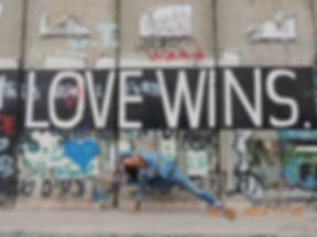 David Sye Palestine wall