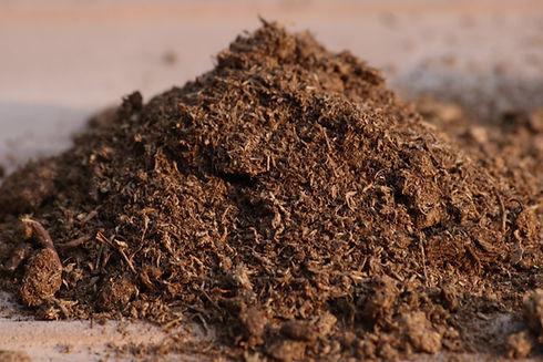 Peaty-Soil.jpg