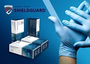 Shieldguard7_edited.jpg
