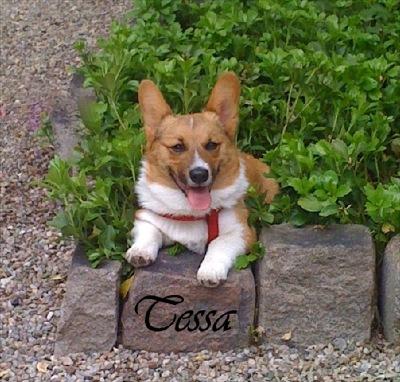 Tessa Posing