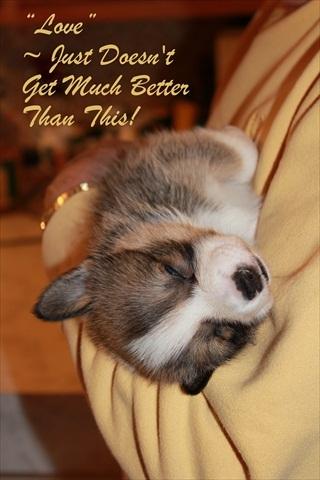 Sweet Nap Time
