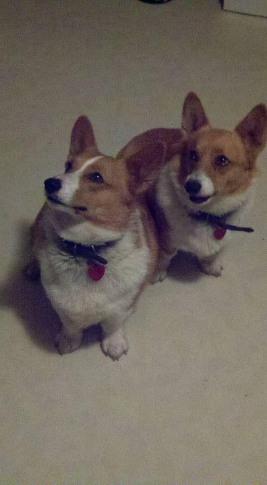 Sisters Carlin & Casey