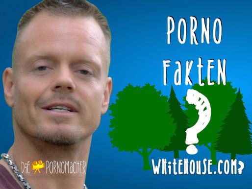 Porno im White House?
