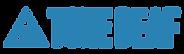 td-logo-286x84-1.png