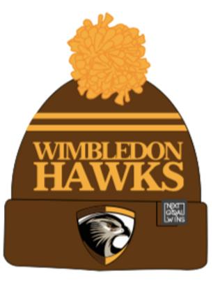 2019 Hawks Beanie Hat