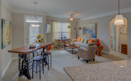 Your living/dining spaces