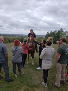 RW Horse Program