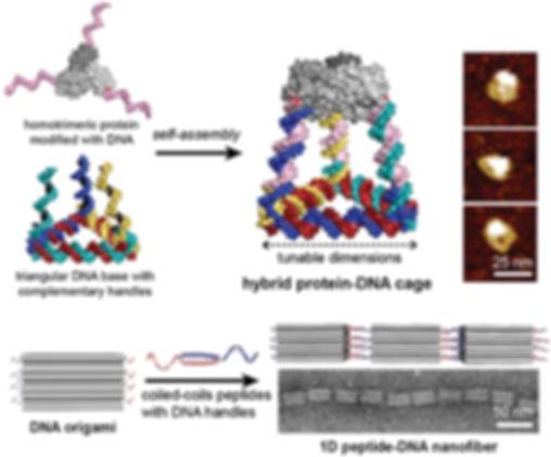 thumbnail_Direction 1 - hybrid nanostruc