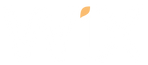 Wix expert in auckland new zealand