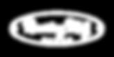 Roaring Meg Fires Logo